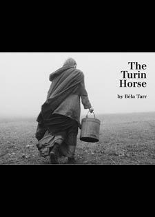 حصان تورينو - بانوراما الفيلم الأوروبي في زاوية