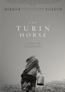 """""""حصان تورينو"""" في الكابينة"""