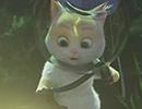 16252_Cats3.jpg