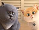 16253_Cats4.jpg