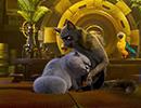 16254_Cats5.jpg