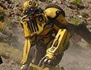 16370_Bumblebee10.jpg