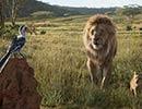 17074_LionKing9.jpg