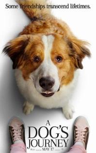 A Dog's Journey (عائلة)